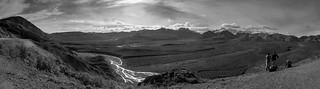 #0865 Denali National Park ll