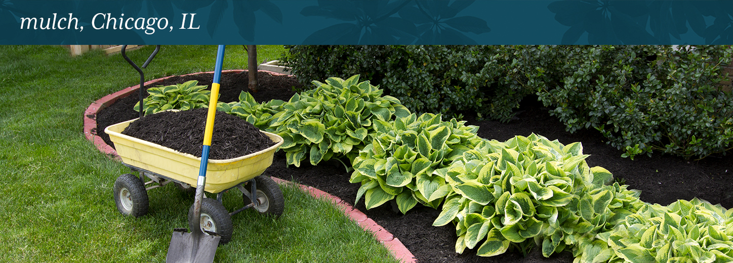 To Protect Garden Plants From Unwanted Grass, Homeowners Can Use Mulch In  Chicago, IL. Lurvey Is A Landscape Supply And Garden Center That Provides  Products ...