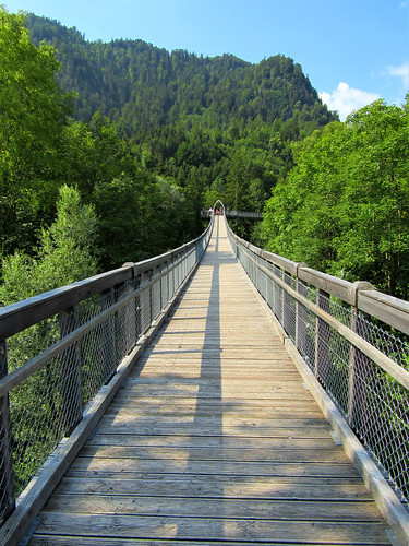 wooden footpath between treetops in forest adventure center