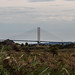 RSPB Rainham Marsh-Dartford Bridge