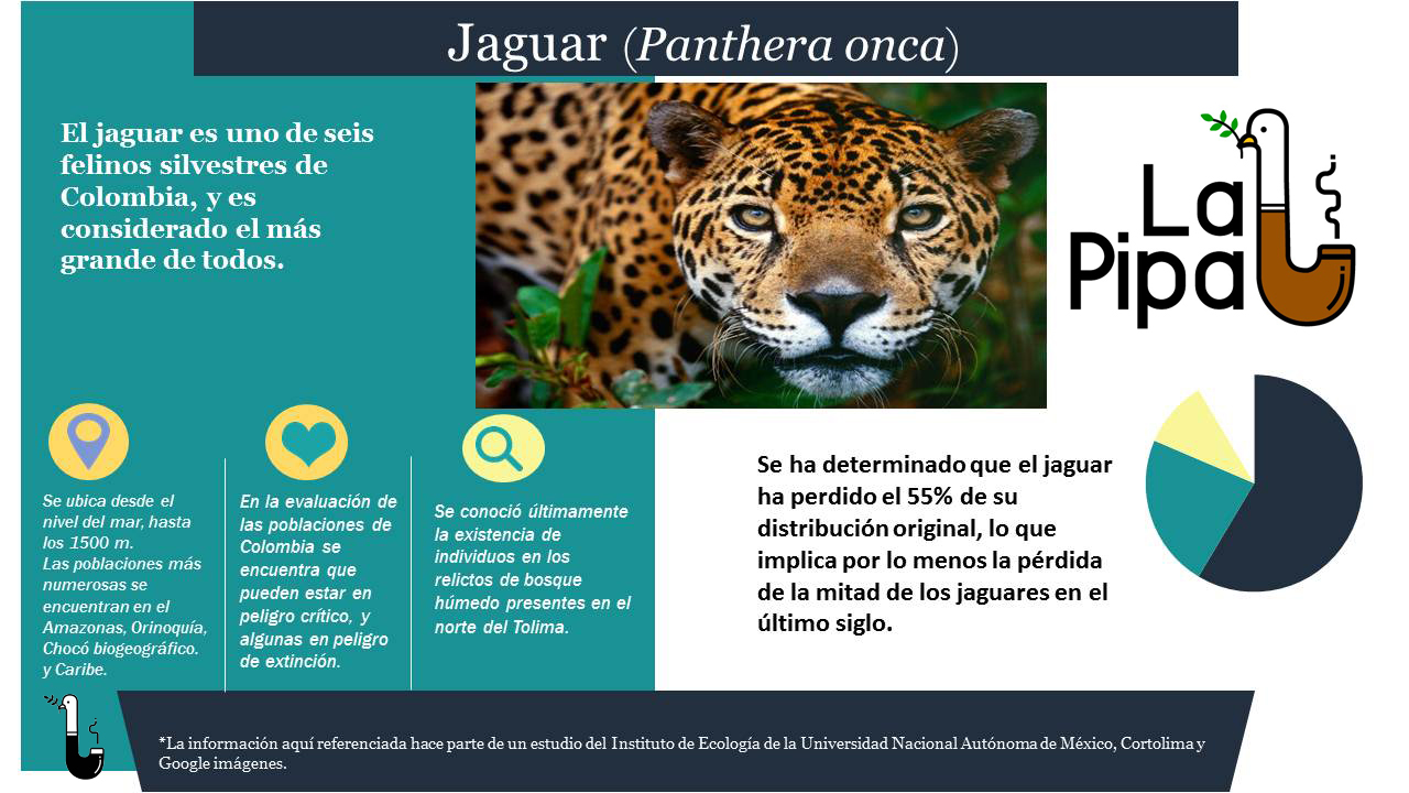 Jaguar2.0