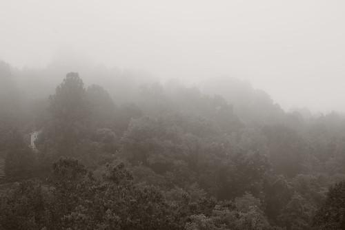 westernnorthcarolina fog pentax k1 smcpentax11885mm iridientdeveloper