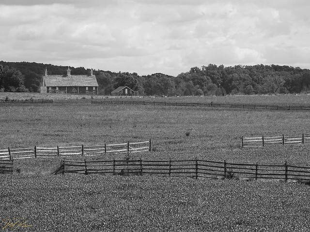 Codori Farm from Behind the Confederate Line - Gettysburg National Military Park (Explore - 9/18/2018)
