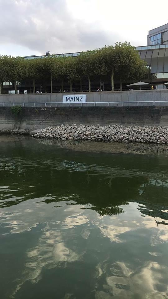 Water Level in Mainz
