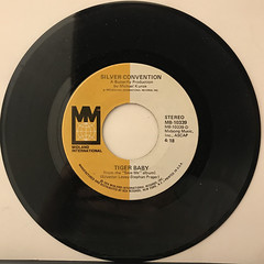 SILVER CONVENTION:FLY, ROBIN, FLY(RECORD SIDE-B)