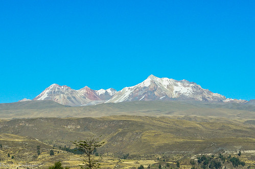 travel peru andes snow volcano hualcahualca colcacanyon nature landscape tree mountainside mountain sky