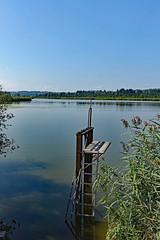 2018-08-19 Maising, Maisinger See, Starnberger See 019