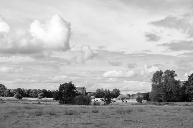 Dutch landscape-Drenthe, Pentax K-5, smc PENTAX-DA 18-55mm F3.5-5.6 AL WR