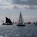 IMG_9383 - The Solent - Hampshire - 15.09.18
