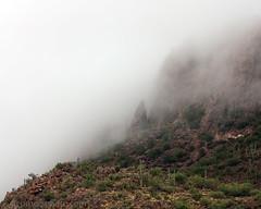 Fog and Tucson Mountains, Pima County, AZ