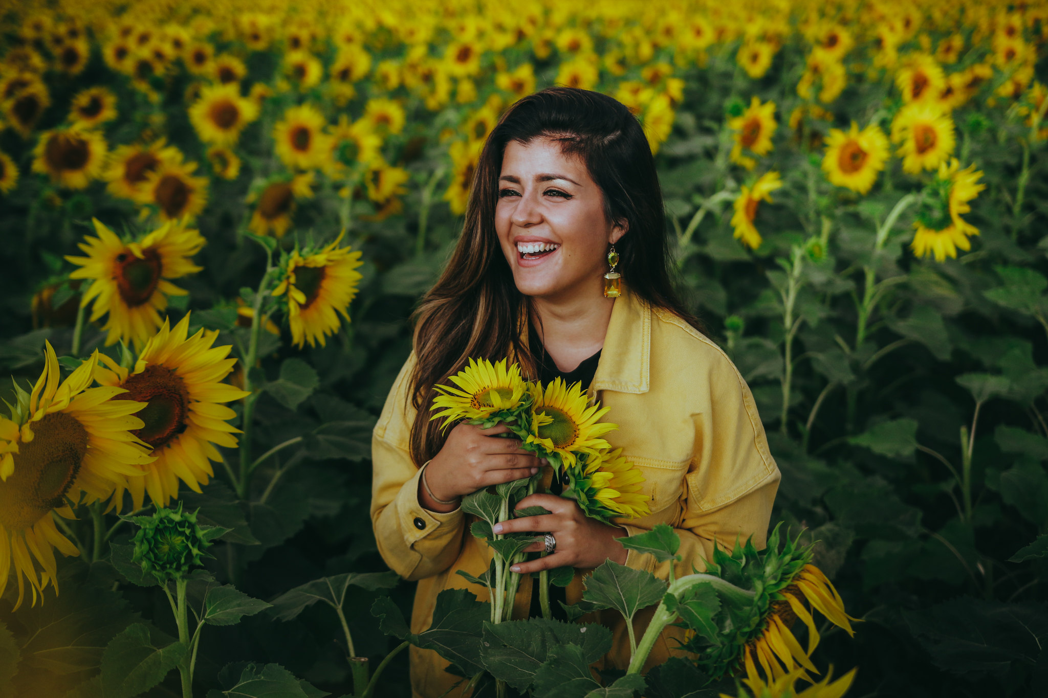 auringonkukkia-16
