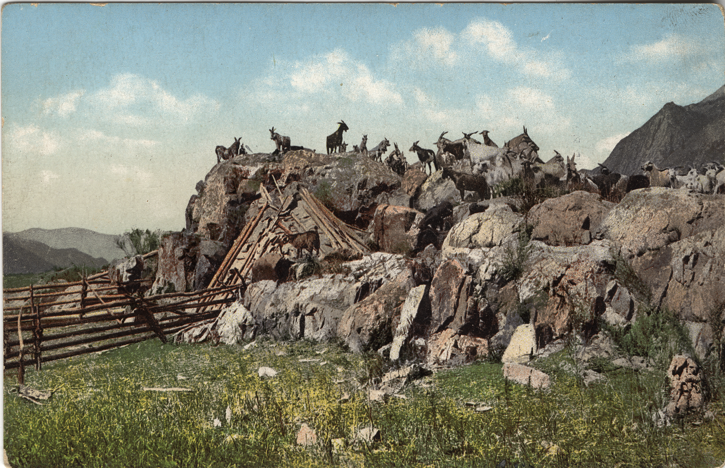 Жилище алтайцев (чаадыр). Долина Катуни
