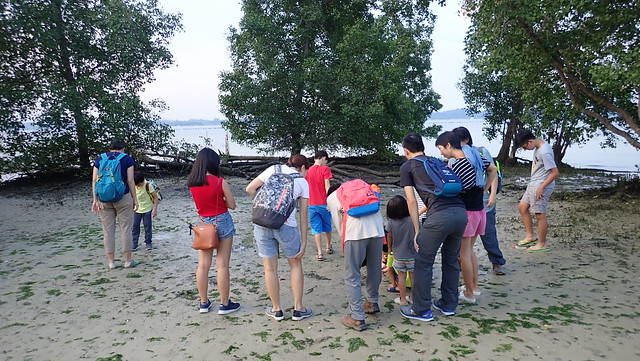 Pasir Ris tour with the Naked Hermit Crabs, Sep 2018