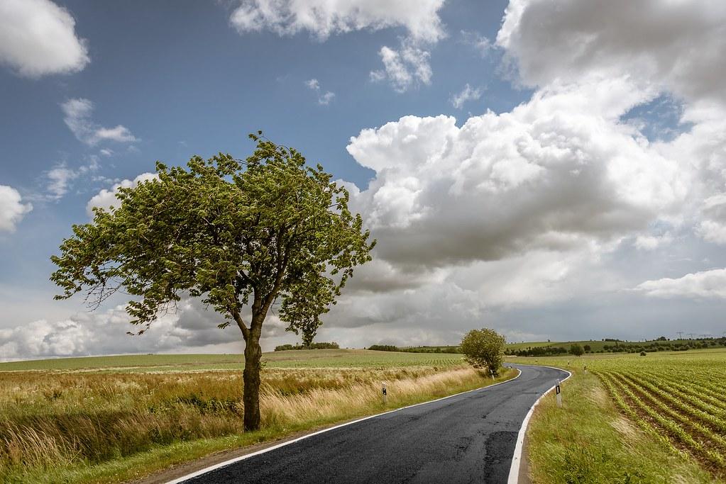road-863369_1920
