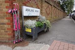 Dead buggy on Ashlake Road