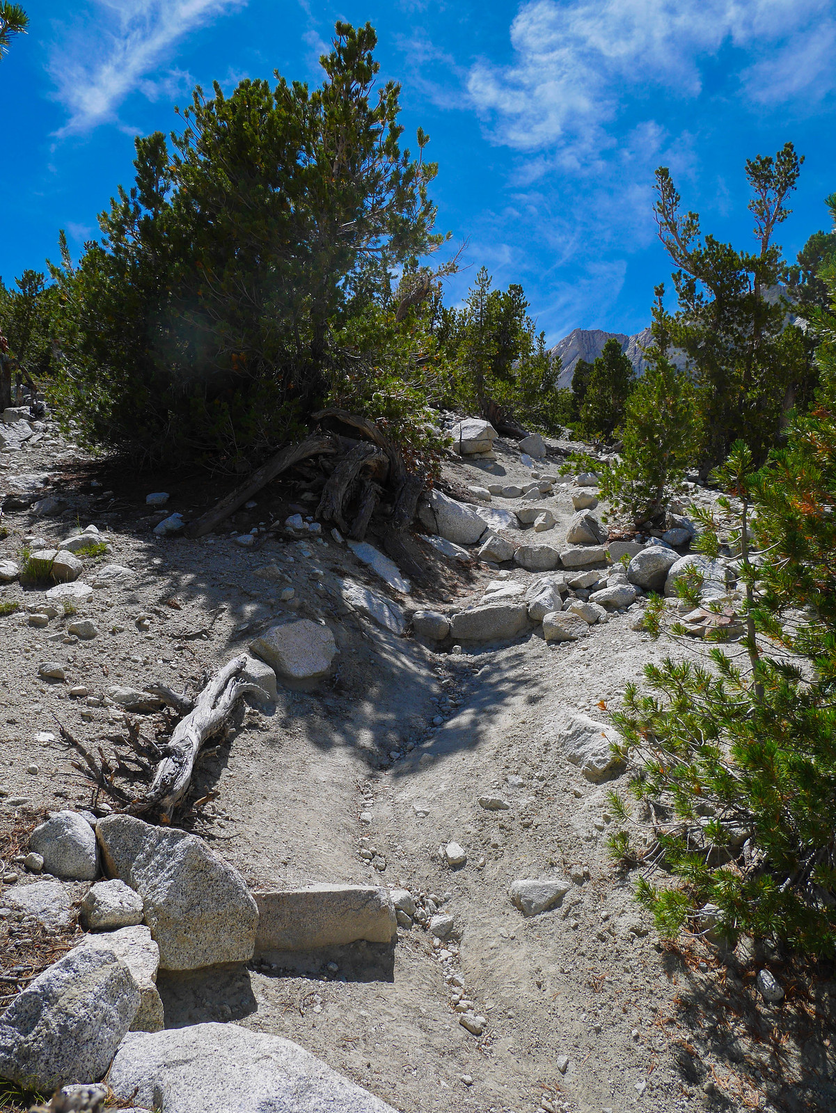 Met the Shepherd's pass trail, oh you wanted to be back on trail after all that talus? Here, just go STRAIGHT UP