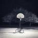 Hoops by Philocycler