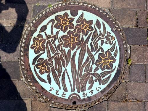 Sumoto Hyogo, manhole cover (兵庫県洲本市のマンホール)