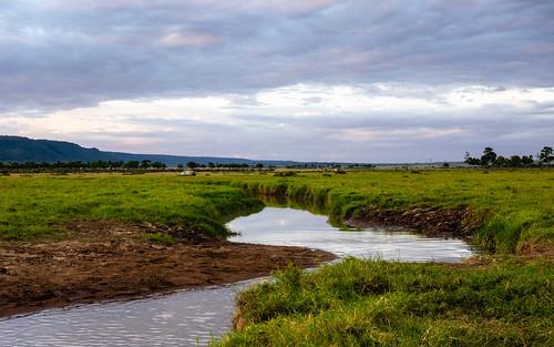 sunset paysage june kenia masaimaranp nature transmara riftvalleyprovince kenya ke