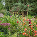 Herbaceous border at Great Chalfield Manor