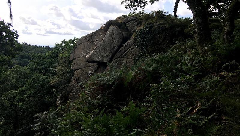 Daffy Duck on Dewerstone Rock
