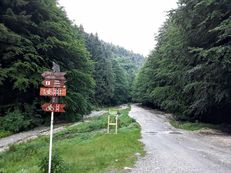 Drumetie in Piatra Craiului - Zarnesti-Creasta Nordica (1)