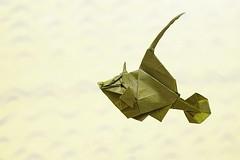 Origami - Takuro Kashiwamura