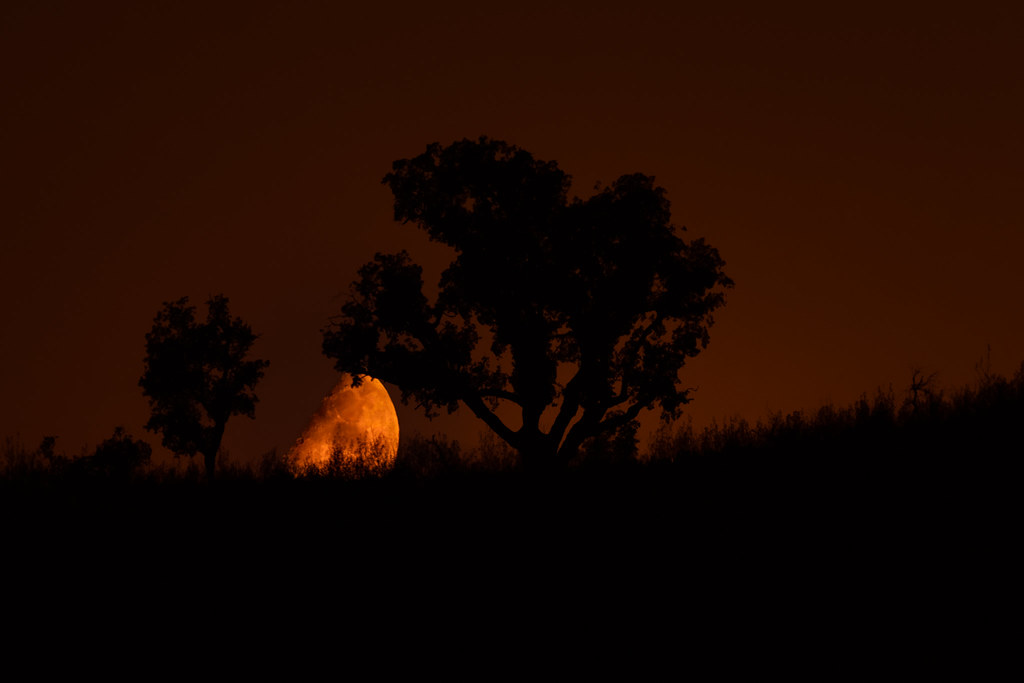 Moonset in the Algarve Serra