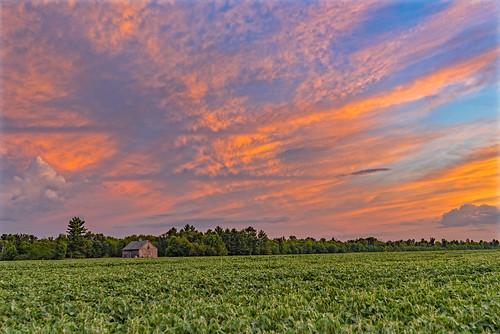 wisconsin farm sky sunset clouds art new old green orange blue color nikon dslr field tree trees cloud sunsets landscape
