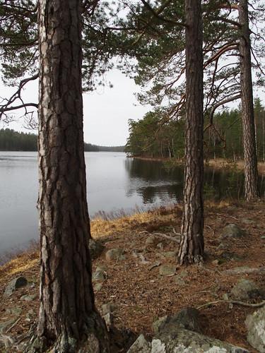 SÖ E18 Älgsjön