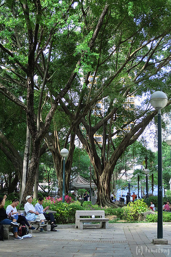 Jockey Club Tak Wah Park