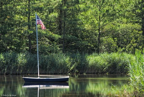 adrift oceanviewde oceanview delaware de lsd lowerslowerdelaware sussexcounty trees forest pinetrees boat flag americanflag reflection reflections water sailboatpond pond sailboat