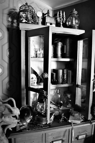 Le petit monde d'alixir: Mù nouvelle vie - Page 3 44822180401_36d3af1cd1