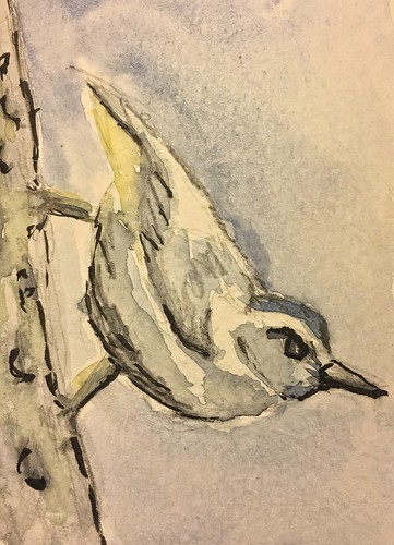 watercolorpainting bird