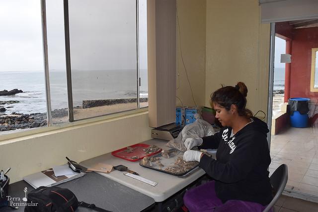 Entre conchas y volcanes, experiencia de Verónica Vargas