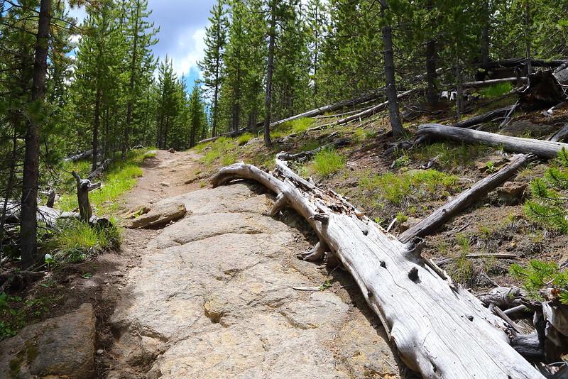 IMG_8840 Monument Geyser Basin Trail