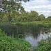 River Colne, Cricketfield Road