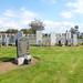 Hawkhill Cemetery Stevenston (182)