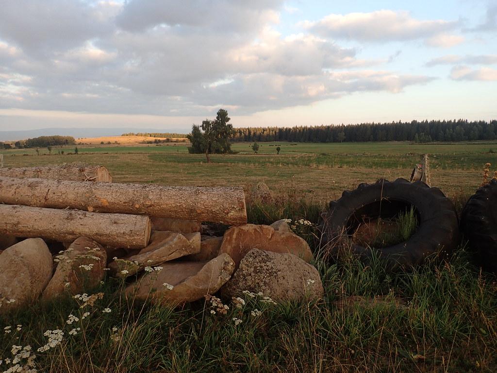 Au bois des Fraux et alentours