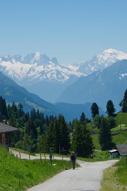 Unhelpful Portrait, Switzerland, Jul 18