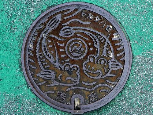 Sasiki Okinawa, manhole cover (沖縄県佐敷町のマンホール)
