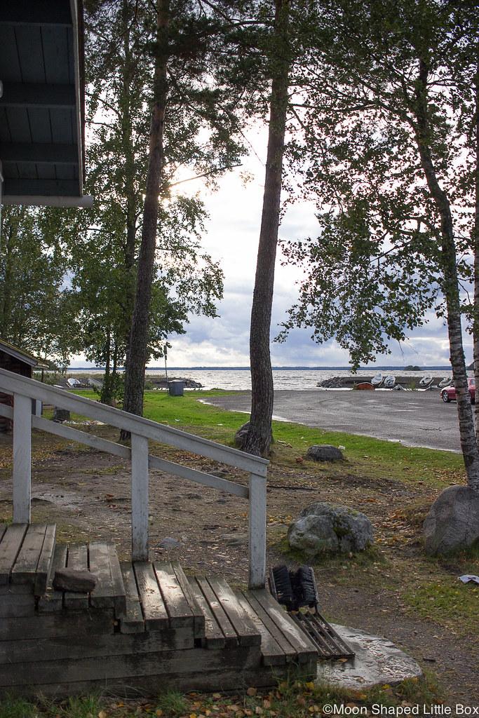 Koivuniemi, Joensuu, Koivuniemen ranta