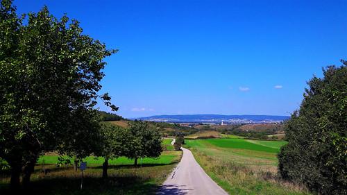 Kései nyár a dombtetőn (Klingenbach, Ausztria)