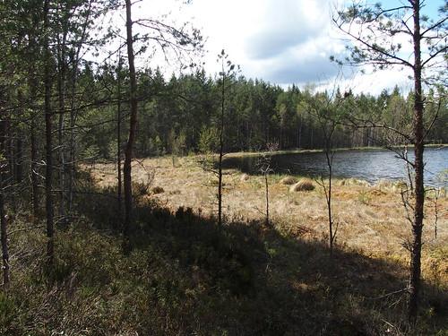SÖ E25 Sjön3