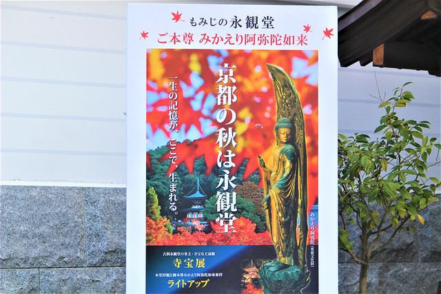 eikando-koyo002