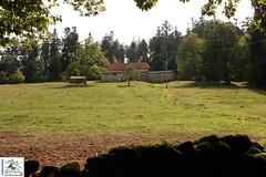 2018-09-16-14-02-28_Les FT vallée de la Zorn.jpg - Photo of Hengwiller