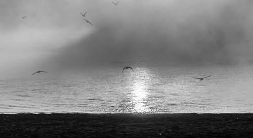 09-22-2018-fog_(2_of_14)