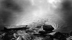 Black water rock stream reflection