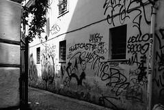 Rione XIII, Trastevere, Rome