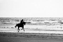 Oh that Deauville beach...